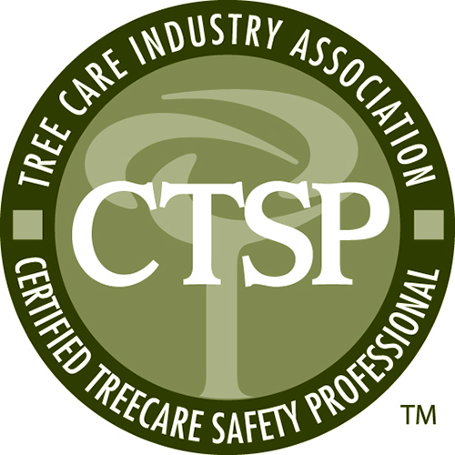 arborscape becomes a certified tree safety specialist