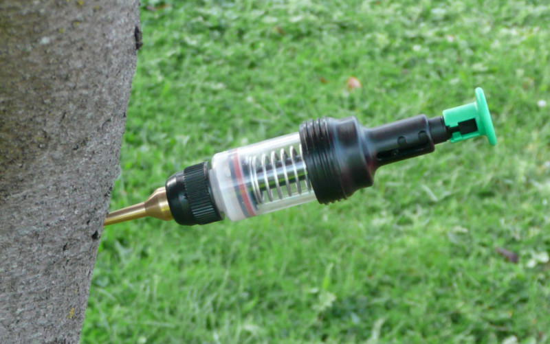 about merit injections, on ArborScape Denver Tree Service articles